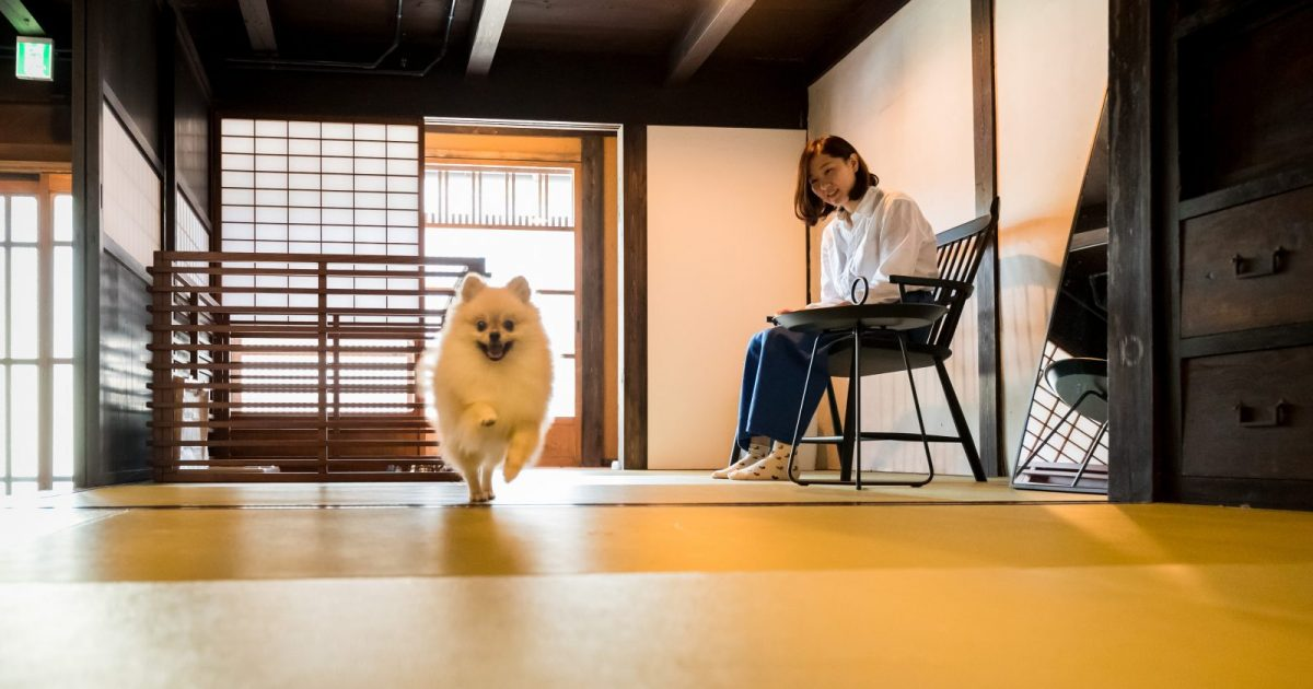 ペットと泊まれる古民家の宿